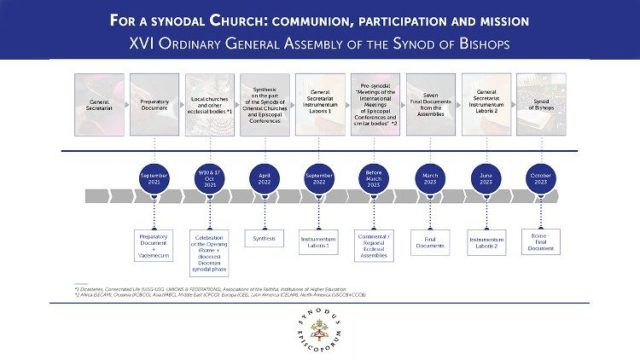 The stages of the synodal journey