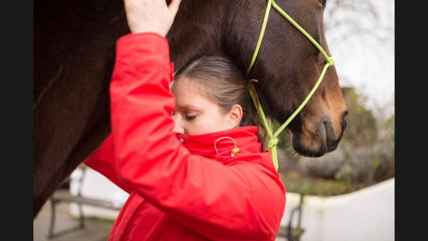 ostheopathic treatment for vaulting horses