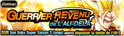 Dragon Ball Z Dokkan Battle Guerrier Revenu de l'au-delà
