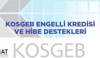Kosgeb Engelli Kredisi Ve Hibe Destekleri