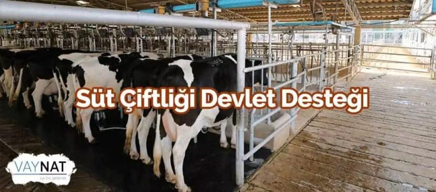 Süt Çiftliği Devlet Desteği