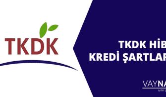TKDK Hibe Kredi Şartları Nelerdir