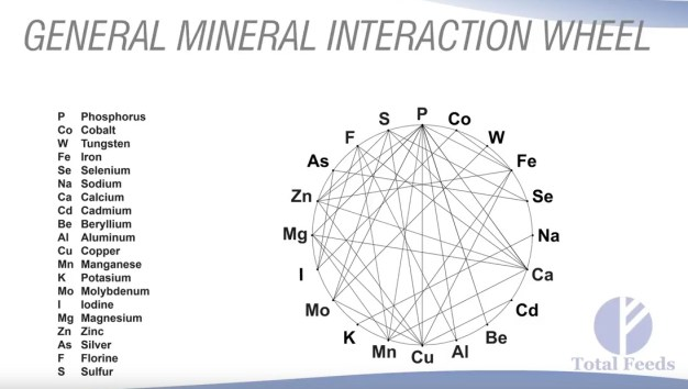 General Mineral Interaction Wheel. Courtesy of Dr. Harry Anderson, Total Feeds, Inc.