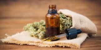 Start-up für medizinisches Cannabis bekommt sechsstelligen Betrag