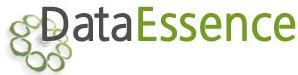 Data Essense