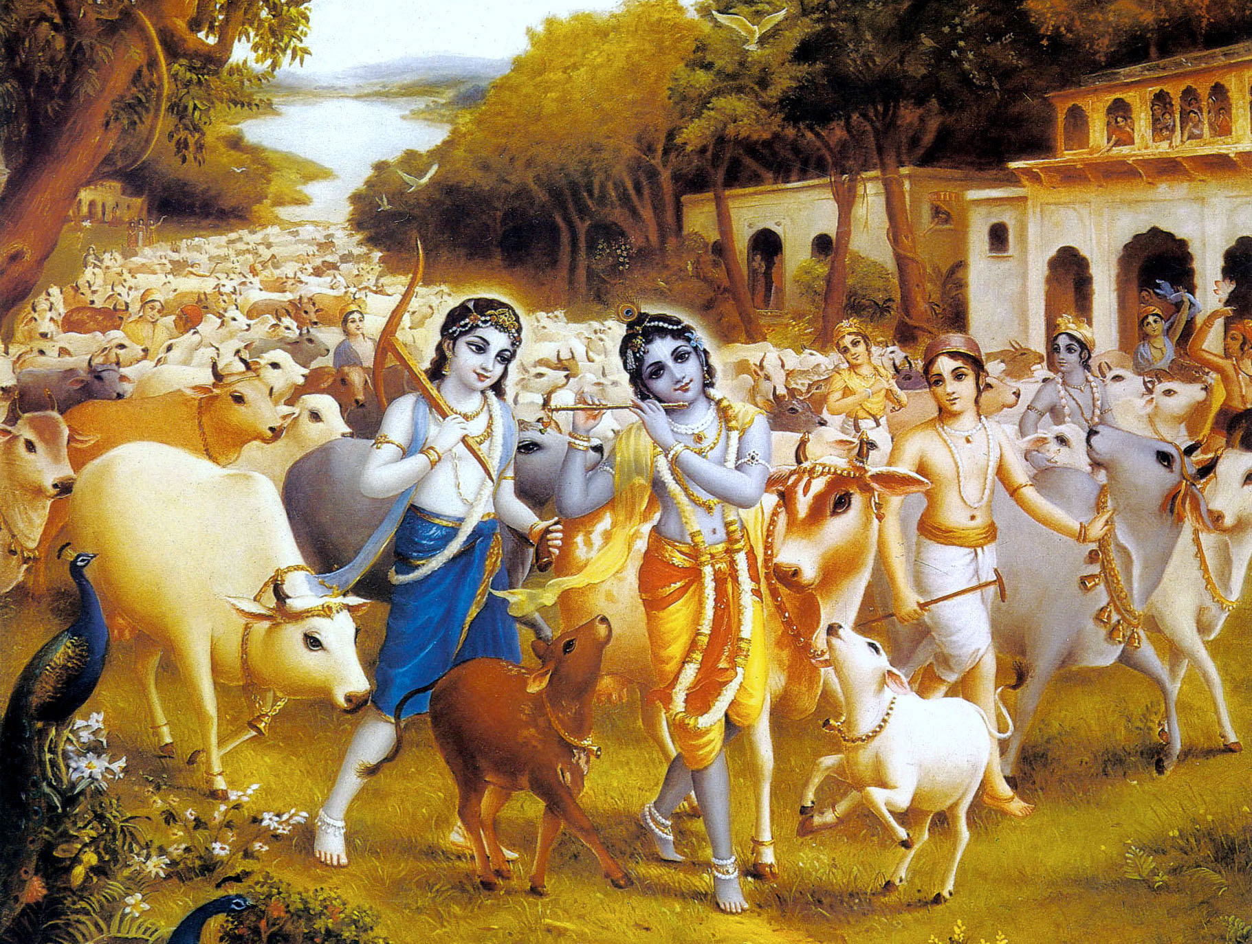 https://i2.wp.com/www.vcm.org.in/blog/wp-content/uploads/2017/10/Krishna-and-Balarama-play-as-cow-herds-boys-in-Vrindavan-and-enjoy-loving-pastimes-with-their-devotees-1.jpg