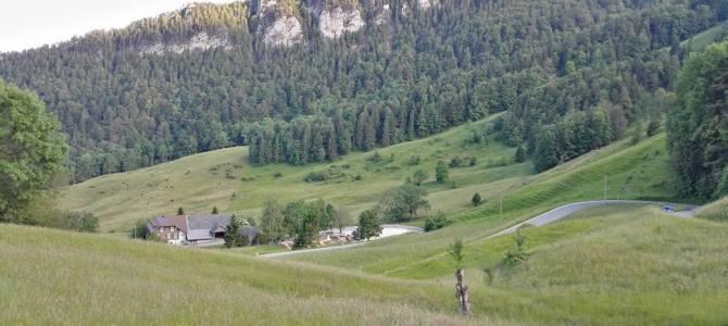 Das Bergrennen Rüttenen – Balmberg geht an den VC Peloton!!!