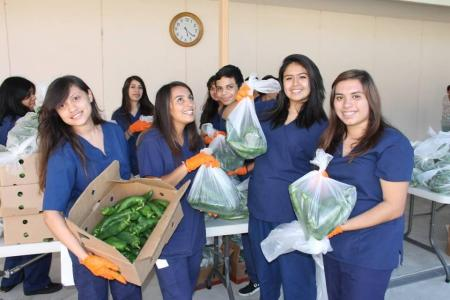 Students volunteer at a food giveaway of fruits and vegetables with The Corazonas Sanos Program offered through the Westminster Free Clinic at United Methodist Church of Thousand Oaks.