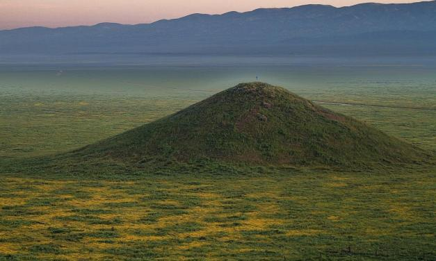 FULL BLOOM FEVER | National Monument north of Highway 33 explodes in natural beauty
