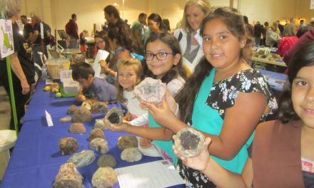 ROCK ON | National gem and mineral convention comes to Ventura