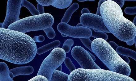 KILLER BACTERIA | County experts get funding to find solutions to avert antibiotic crisis