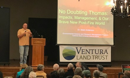 EXPONENTIAL IMPACT | CSUCI professor discusses environmental impact of the Thomas Fire