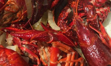 Adventure and variety at Ragin' Crawfish