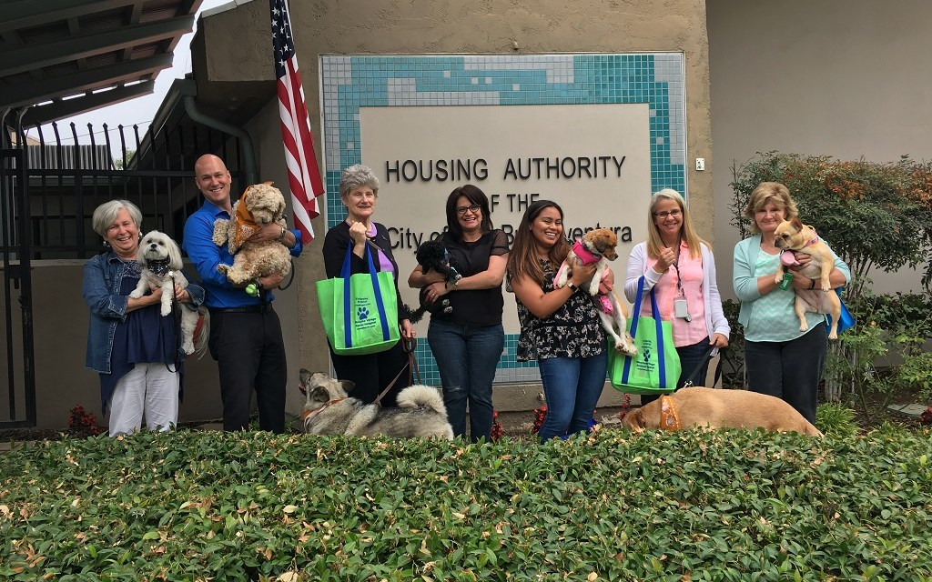 DOGGIN' AROUND WITH DOGS | Locals celebrate national Take Your Dog to Work Day on June 22