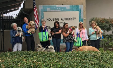 DOGGIN' AROUND WITH DOGS   Locals celebrate national Take Your Dog to Work Day on June 22