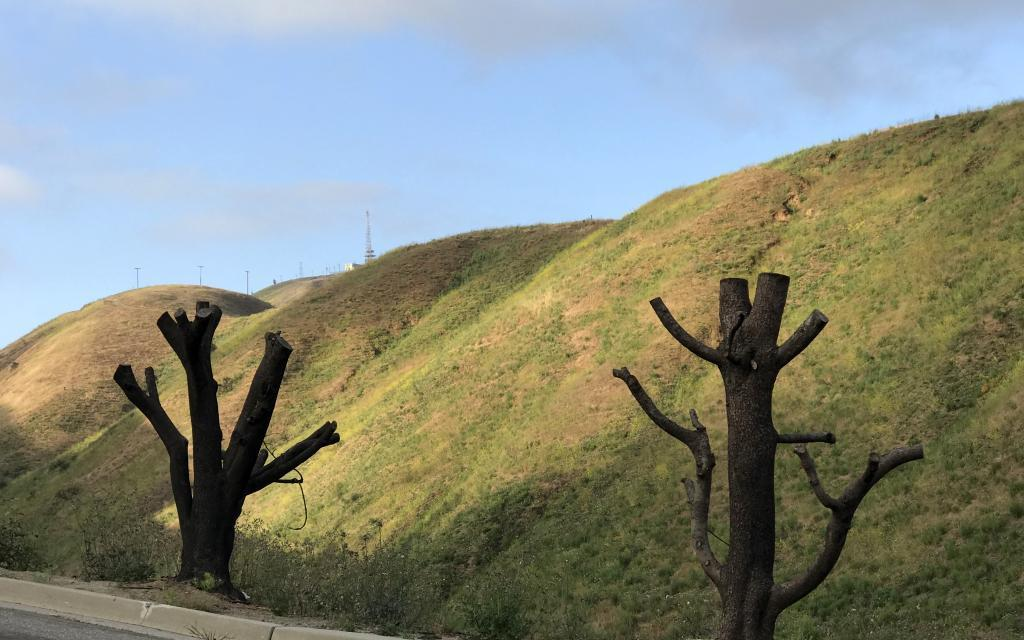 TIME HEALS |Catching up with Thomas Fire victims six months after the December inferno