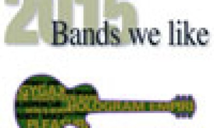 LOCAL MUSIC ISSUE: 2015 Bands We Like