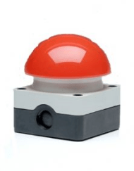 Paddestoelknop rood