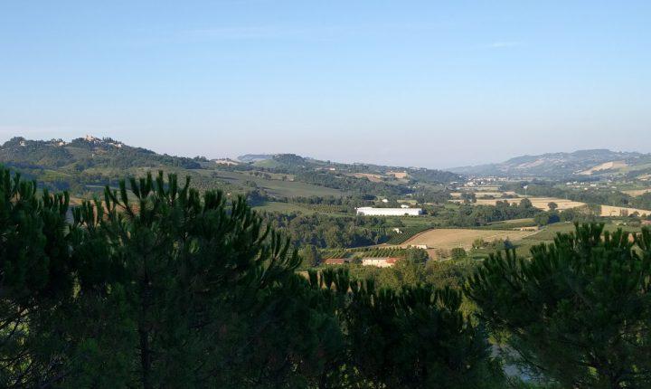 Cantine Aperte tra Fermo e Ascoli Piceno e in Valdaso