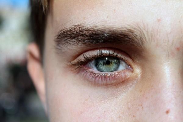 Tutti gli occhi in realtà sono marroni, anche se sembrano azzurri