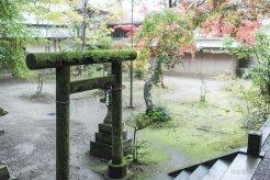 201711_Ibaraki_Tochigi_Gunma_Japan_Travel_By_RentalCar-21