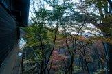 201711_Ibaraki_Tochigi_Gunma_Japan_Travel_By_RentalCar-72