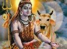 Nandikeswar Abhishekam