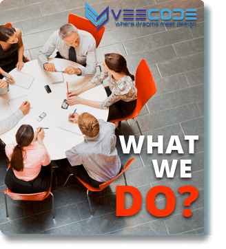 Veecode What We Do