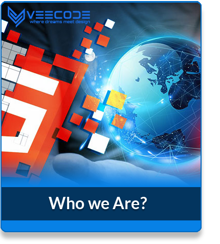 Veecode who we are