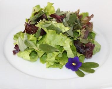 Ensalada de Verdolaga, Lechuga y flores de Violetas
