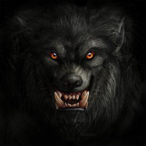 Werewolf, Autor Viergacht, descargada de Pixabay