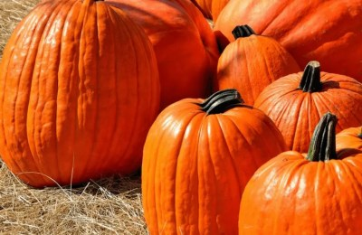 10 reasons why October is great