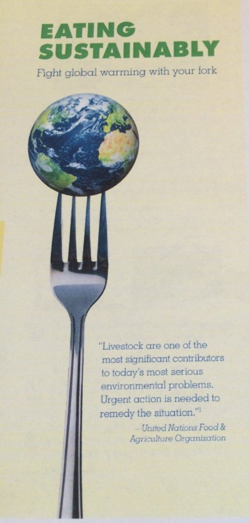 eating-sustainably-1
