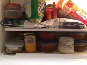 vegan-freezer-2