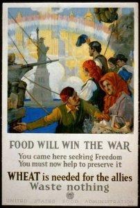 Food Will Win The War - 1917