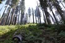 Sierra Trailhead