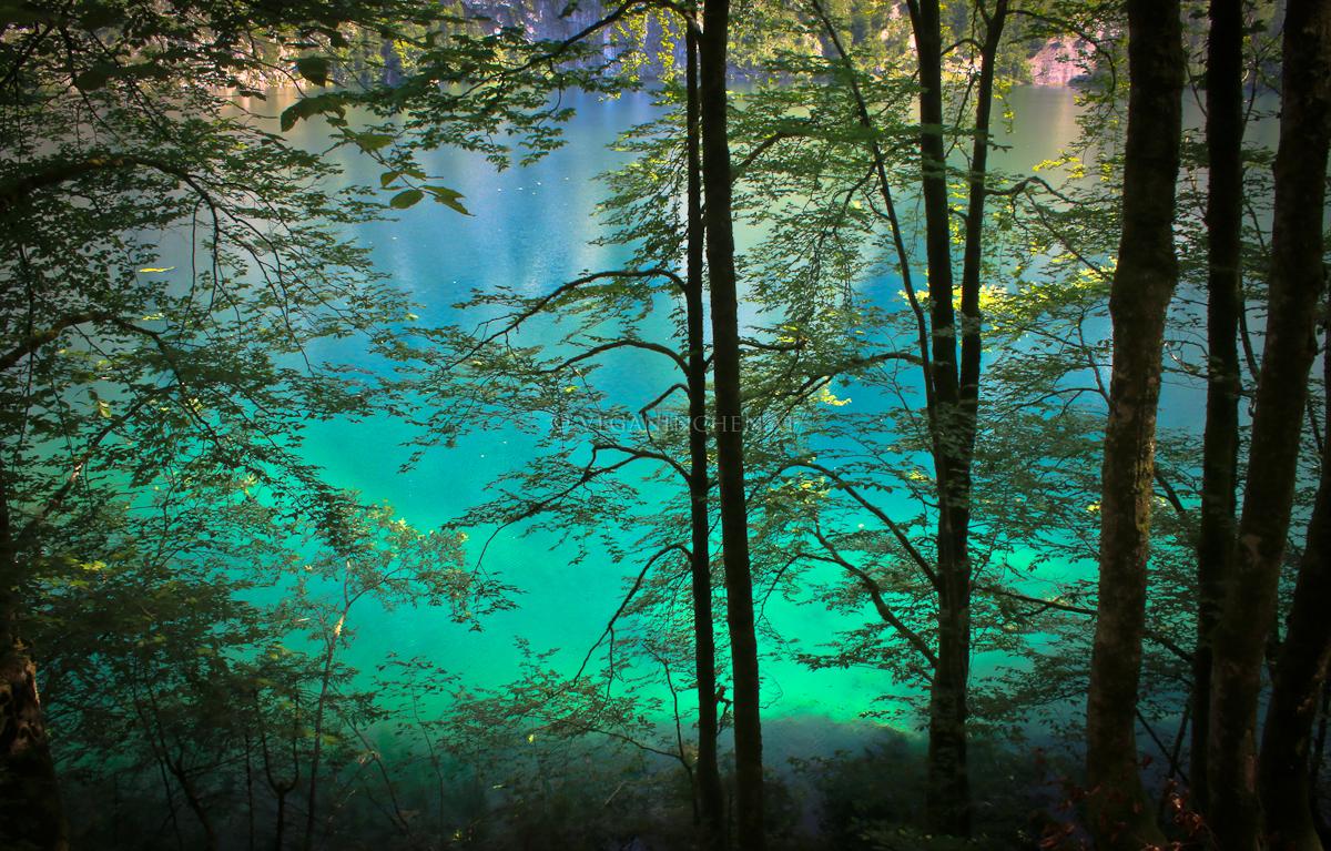 das Blaugrün des Obersees