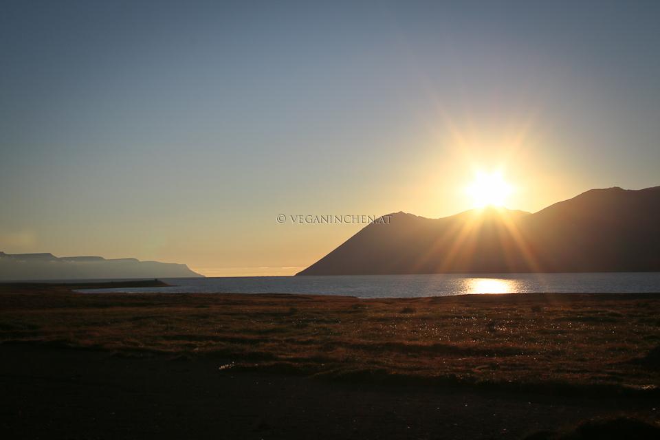 Mitternachtssonne Westfjorde Island veganinchen