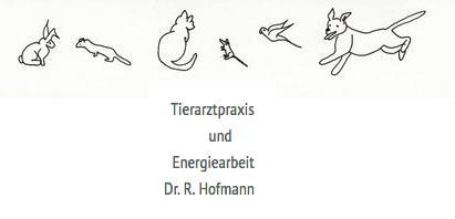 Dr. Hofmann