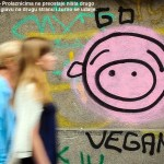 go vegan grafiti stefan stojanovic