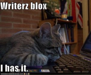 funny-pictures-cat-has-writers-block