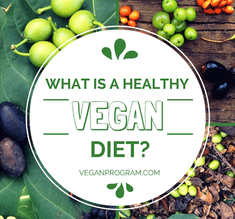 what is a healthy vegan diet vegaanprogram