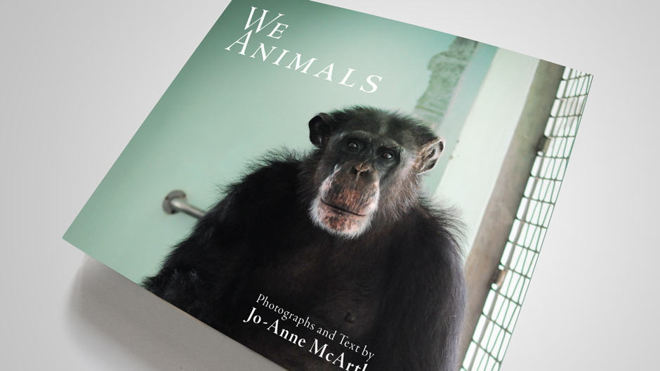 we_animals_01