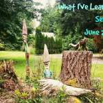 What I've Learned Series: June 2014 Edition