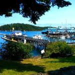 Our Adventures and Delicious Vegan Food in Friday Harbor on San Juan Island, WA