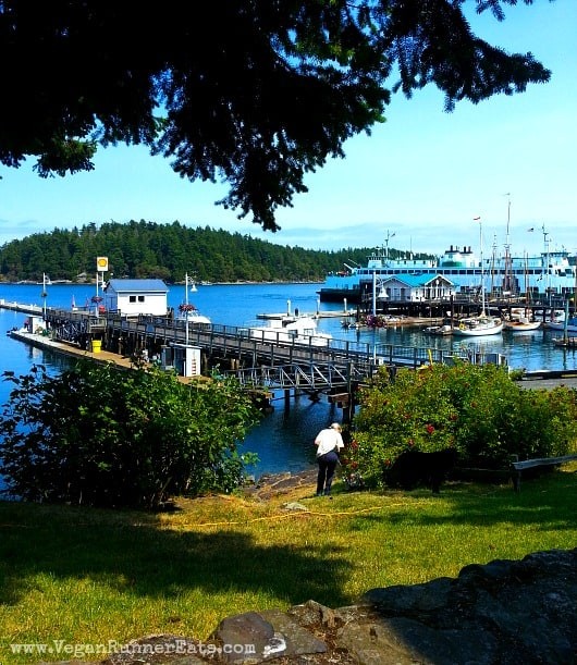 Friday Harbor marina and ferry landing