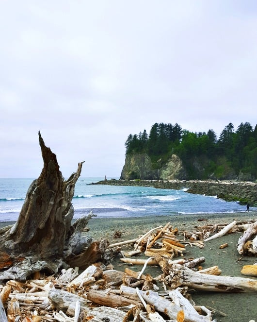 First Beach in La Push, WA