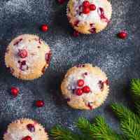 Vegan Cranberry Muffins (Gluten-Free)