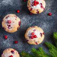 Vegan Cranberry Muffins (GF)