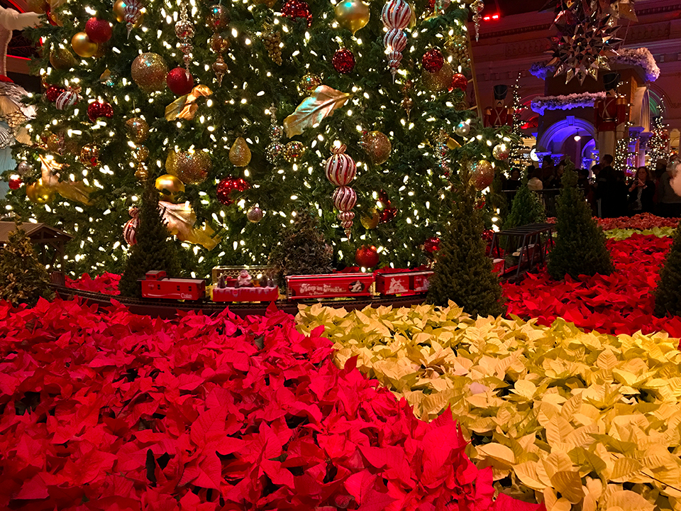 The 2017 Bellagio Conservatory Holiday Glamour Vegas Bright